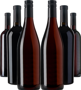 Regional Discovery Collection September 2021 (Red 6 bottle case)